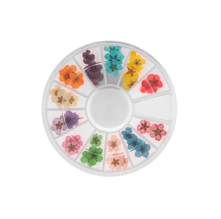 Szárított virág vegyes színekben