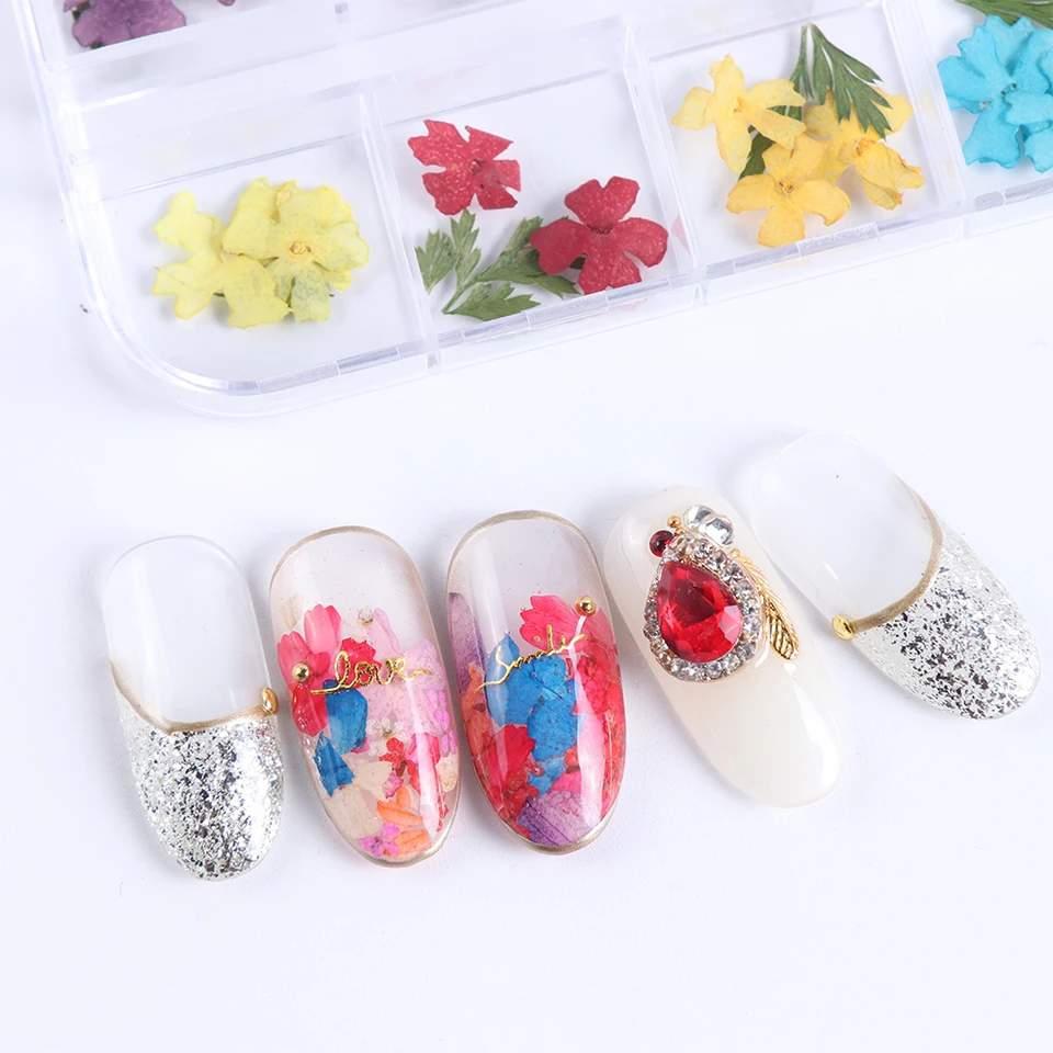Beépíthető szárított virágok